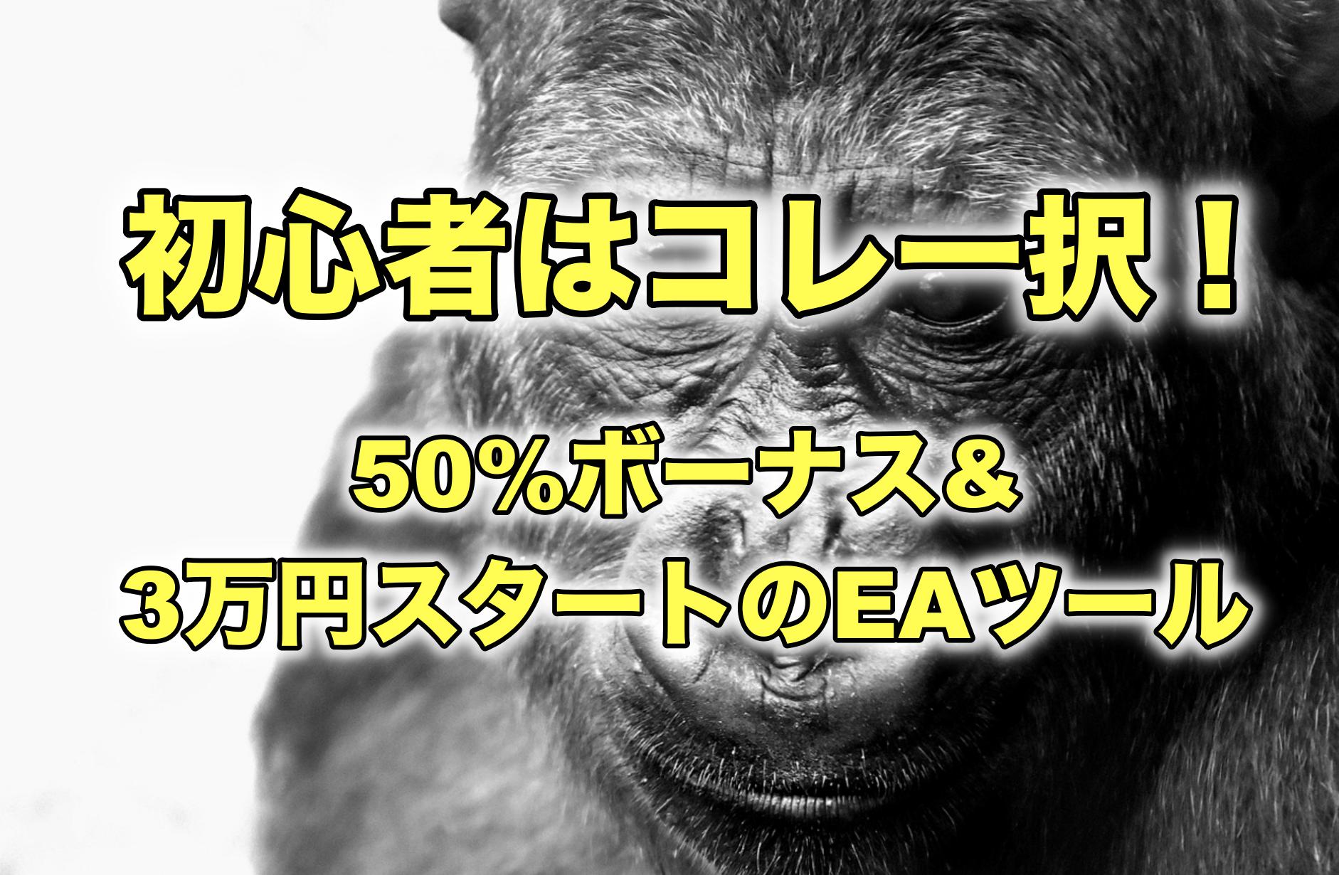 FX自動売買ツール初心者はゴリラEA一択な件【50%の入金ボーナス付き?】